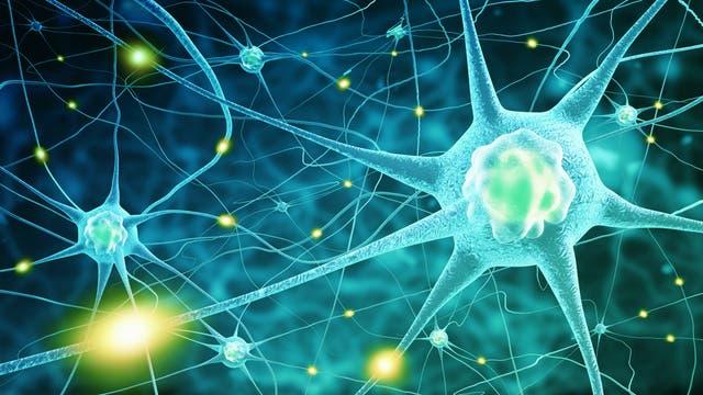 Neuron feuert
