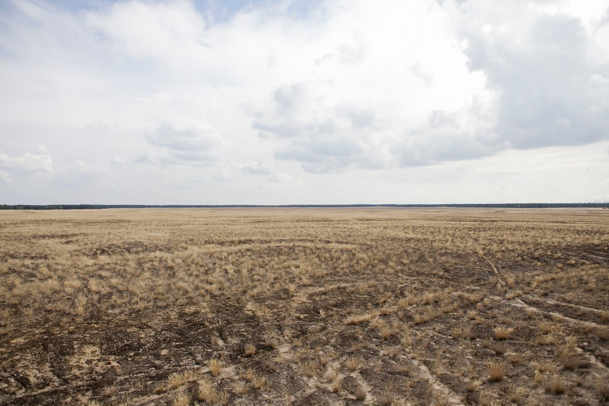 Offene Sand- und Grasflächen