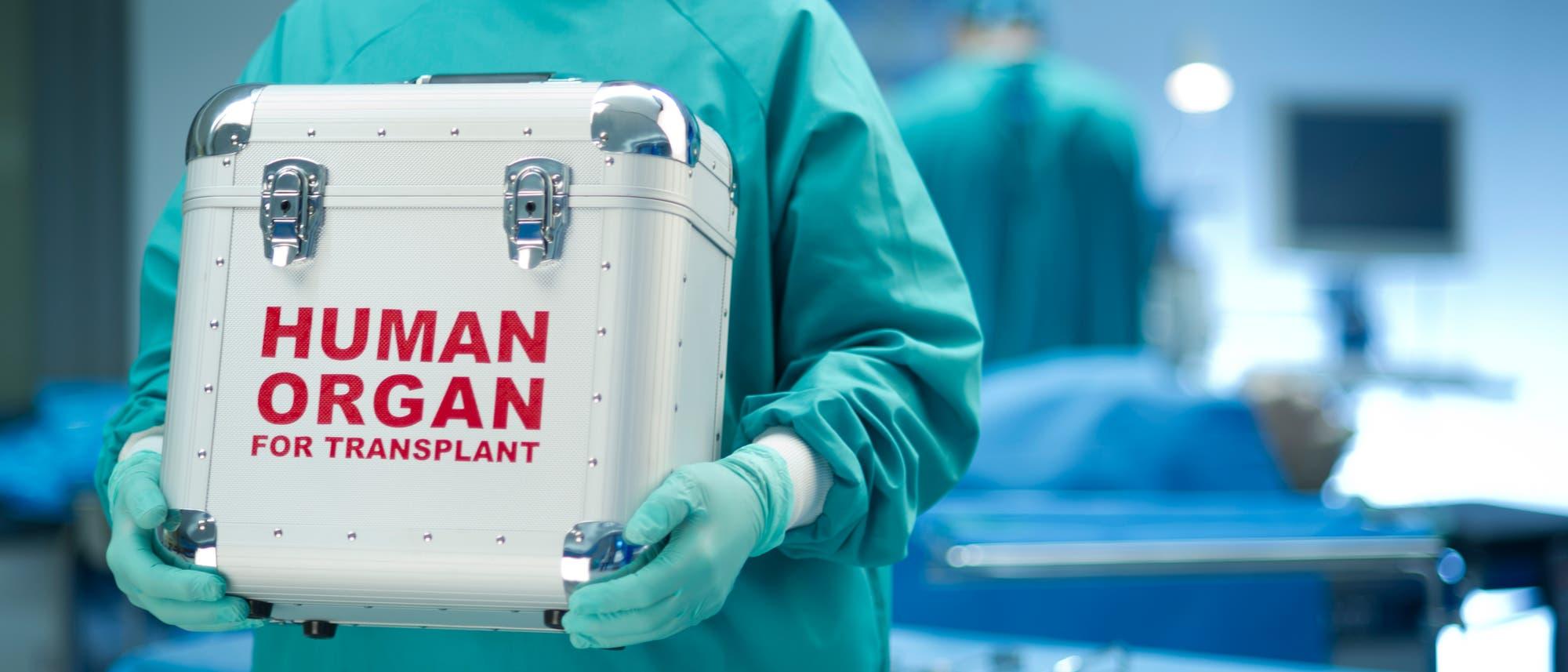Im Koffer ist ein Organ - bereit zur Spende