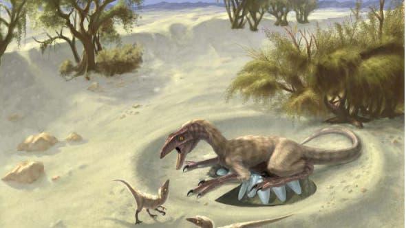 Brütender Oviraptor