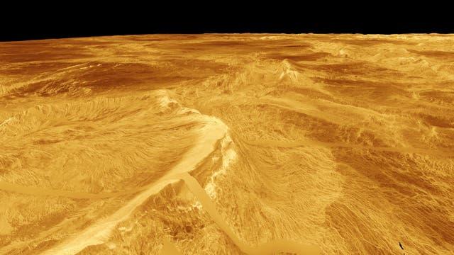 Venus 3D