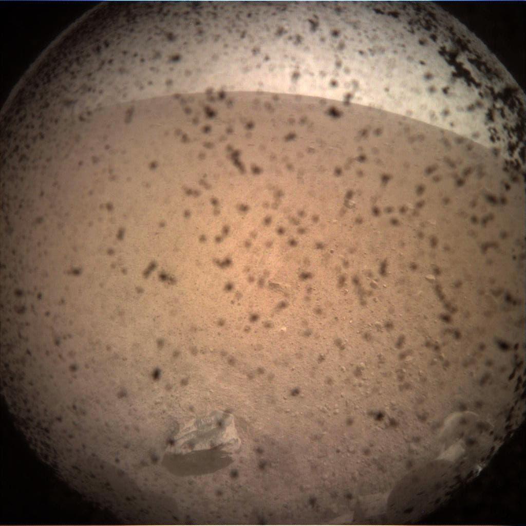 Das erste Bild von InSight