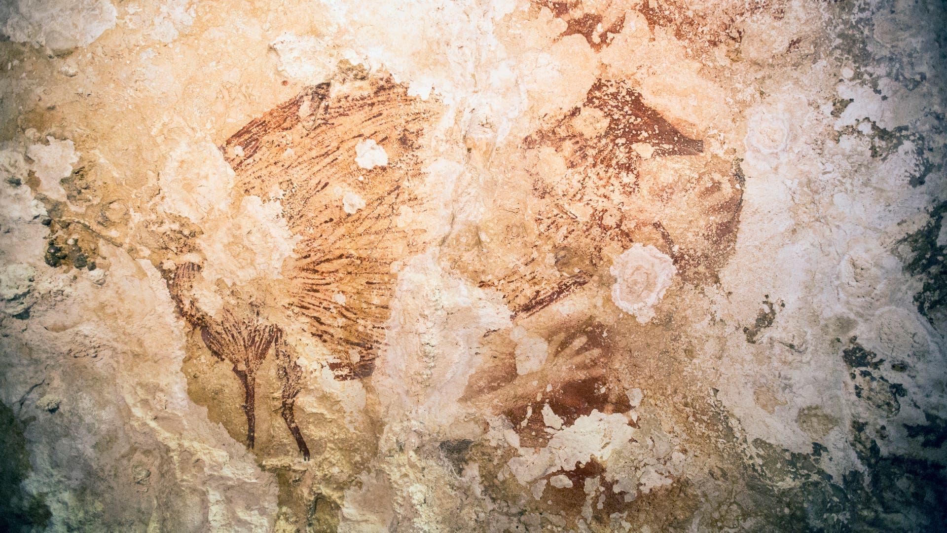 Tierzeichnung aus dem Pleistozän: Der Hirscheber