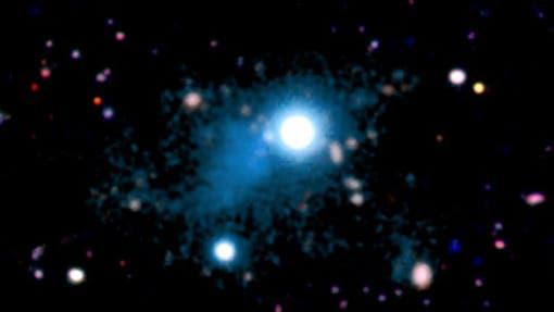 Das kosmische Netzwerk