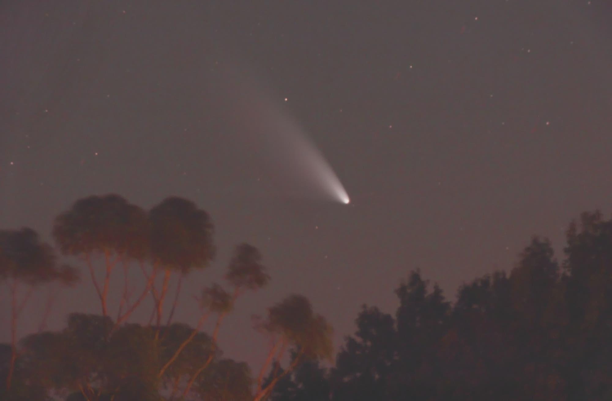 Komet C/2011 L4 (PANSTARRS) am 2. März 2013