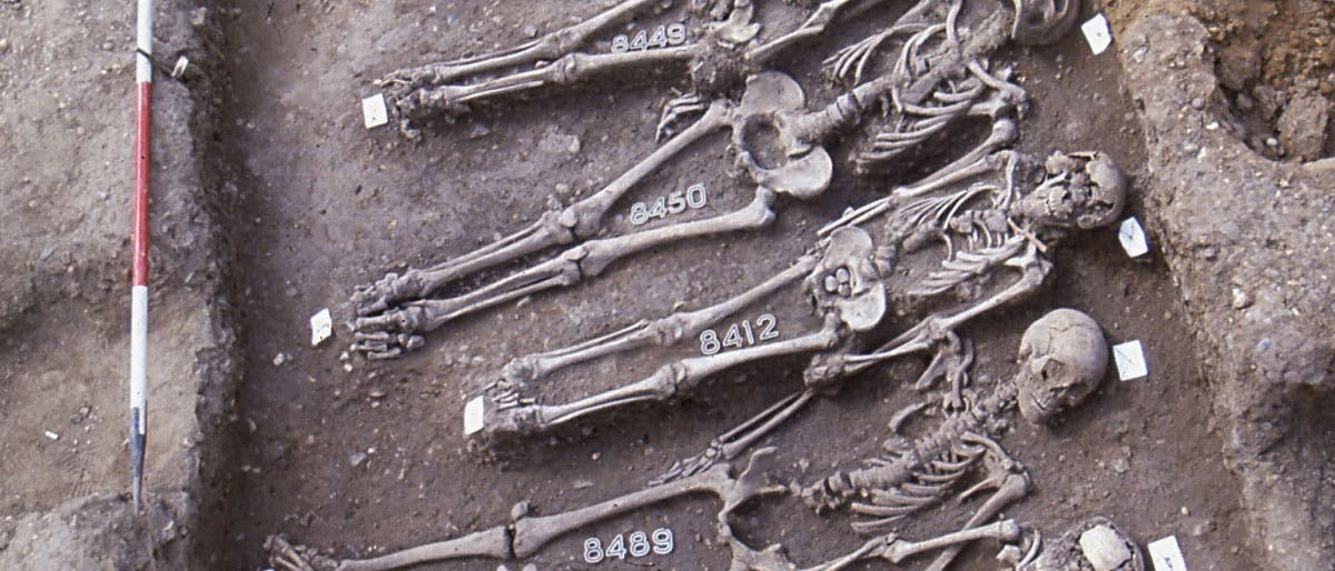 Mittelalterliche Pestopfer in London