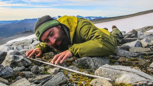 Ganz nah dran am Fund. Ein Gletscherarchäologe begutachtet den Holzschaft eines alten Pfeils.