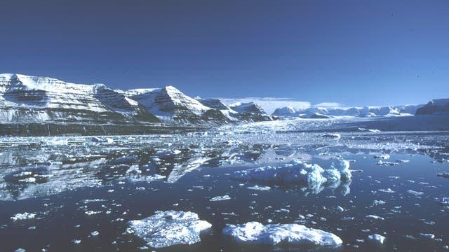 Polarregion