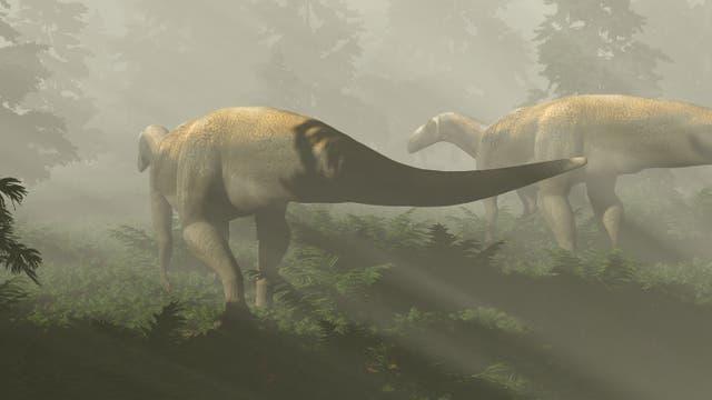 Künstlerische Darstellung des fraglichen Dinosauriers