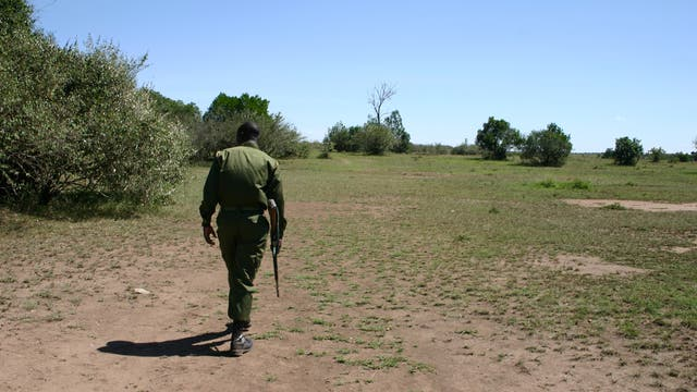 Ranger in Masai Mara, Kenia