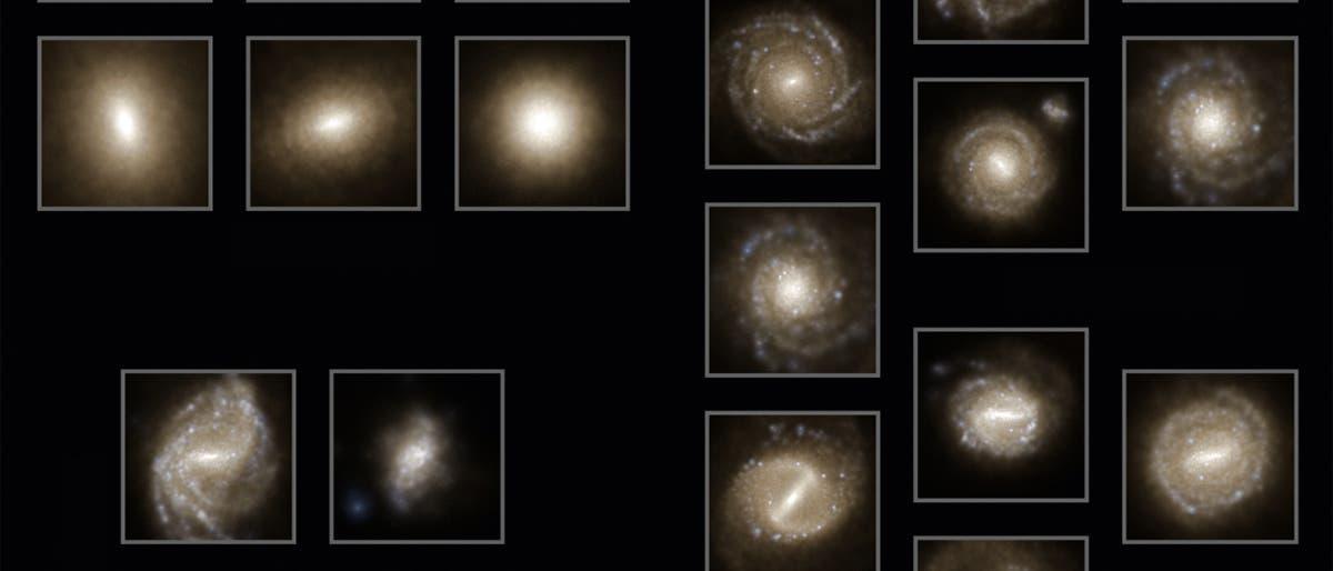 Illustris-Simulation von Galaxien im Universum