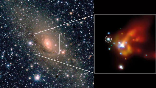 Die Circiniusgalaxie