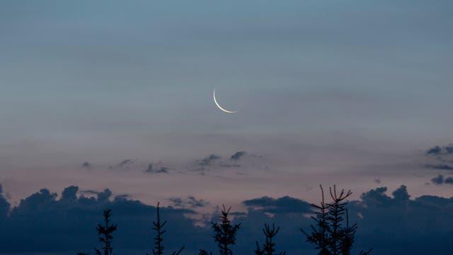 schmale Mondsichel