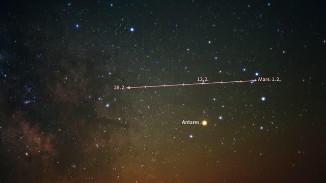 Wie sehr sich der Planet Mars und der Stern Antares im Skorpion in Farbe und Helligkeit ähneln, lässt sich im Februar gut vergleichen, denn Mars (griechisch: Ares) zieht in diesem Monat nördlich an Antares (von griechisch: Anti-Ares) vorbei. Der Himmelsausschnitt ist morgens über dem Südosthorizont zu sehen.
