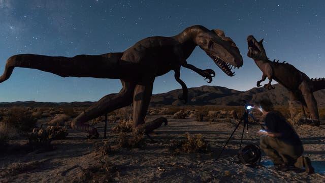 Echsen-Skulpturen in der Wüste