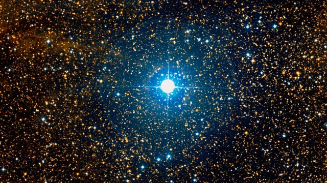 Stern P Cygni