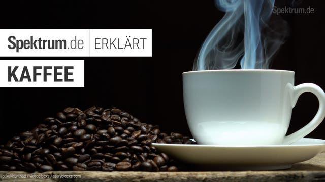 SPEKTRUM ERKLÄRT: Kaffee