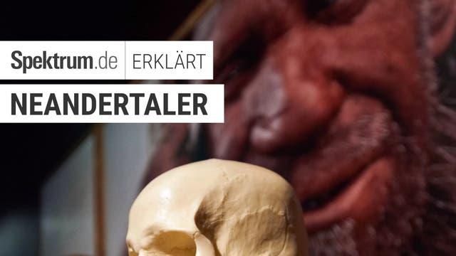 Wie intelligent war der Neandertaler?