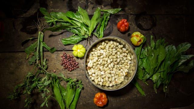Zutaten für die gute Amazonas-Küche