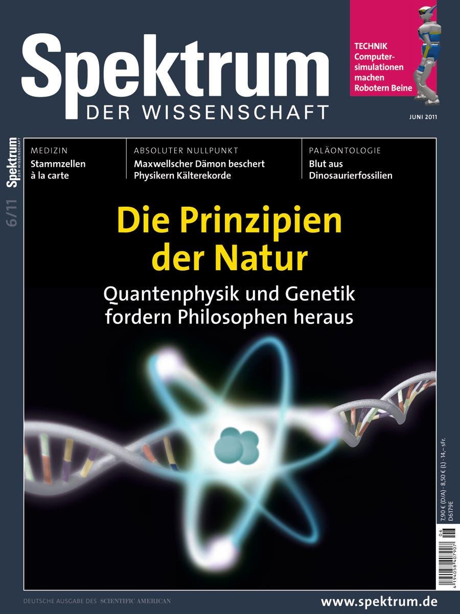 Spektrum der Wissenschaft Juni 2011