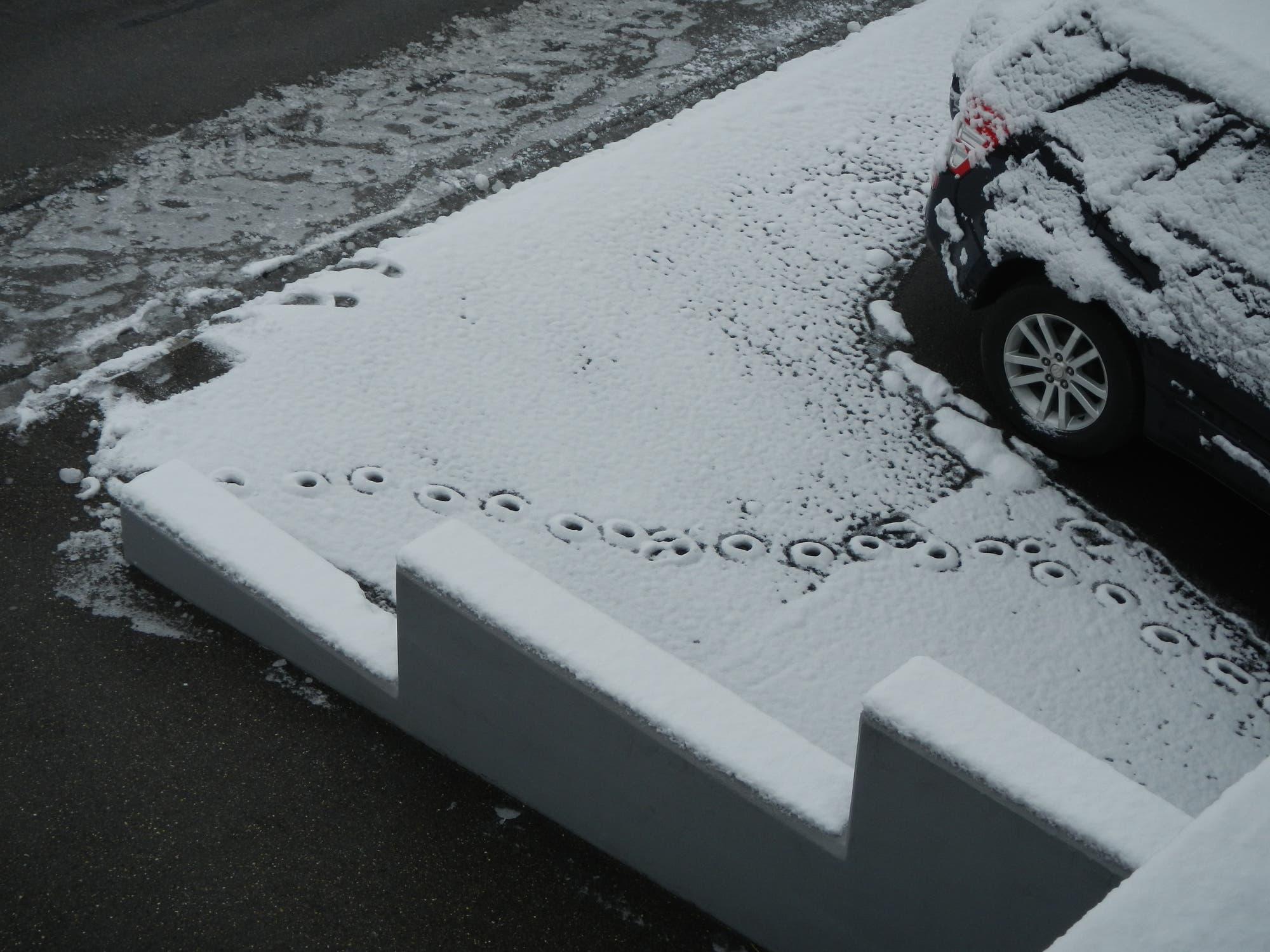 Spur ringförmiger Abdrücke in einer Schneeschicht