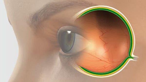 Das Auge - Organ mit Vergangenheit
