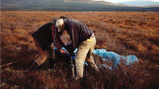 Wissenschaftler ziehen am Forschungsstandort Eight Mile Lake bei Healy, Alaska, einen Bohrkern aus dem Permafrostboden.