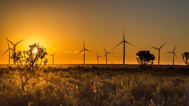 Die Jeffreys Bay Wind Farm an der windreichen Südküste Südafrikas westlich von Port Elizabeth liefert reichlich 50 Megawatt elektrische Energie im Jahresdurchschnitt – ausreichend für 100000 Haushalte.