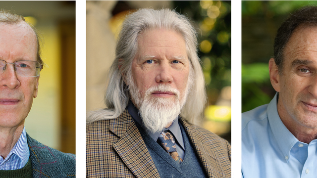 links: Andrew Wiles, Mitte: Whitfield Diffie, rechts: Martin Hellman
