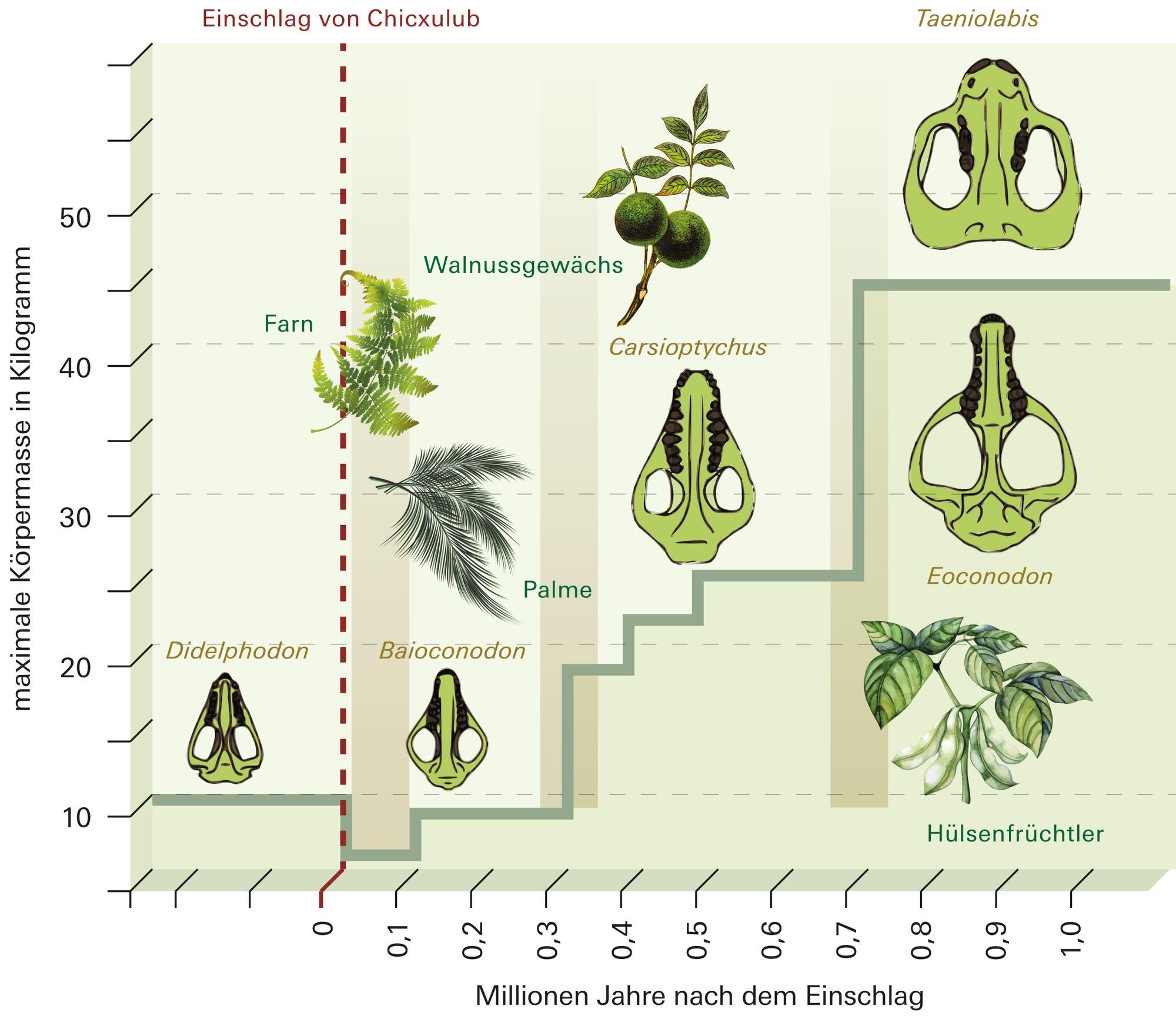 Wie sich Ökosysteme erholen