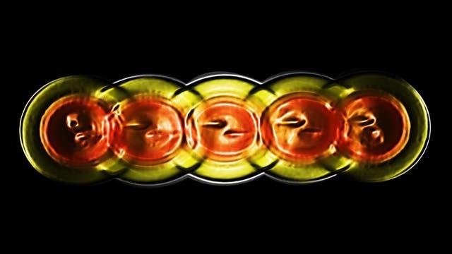 Neon-20 (alternativer angeregter Zustand)