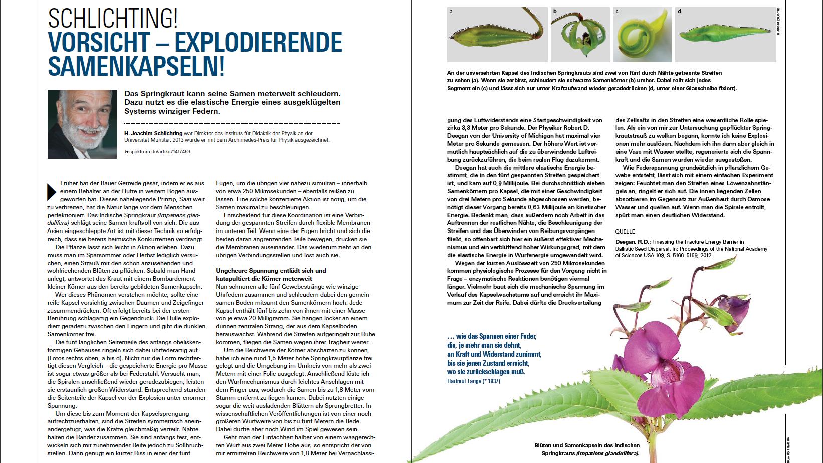 Spektrum der Wissenschaft 9.16 Seite 74