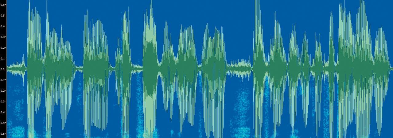 Alle Sprachverarbeitung beginnt mit dem Schallsignal, das vom Mikrofon aufgenommen wird. Man erkennt kurze Pausen zwischen einzelnen Wörtern und eine längere zwischen zwei Sätzen. Unten im Bild das Ergebnis einer (lokalen) Fourier-Analyse: Ähnlich dem, was in der Hörschnecke im menschlichen Innenohr geschieht, wird das Signal in seine Anteile zu verschiedenen Frequenzen zerlegt. Die Frequenzen sind entlang der vertikalen Achse aufgetragen; die weißen und gelblichen Farbtöne kennzeichnen die Amplitude zur jeweiligen Frequenz.