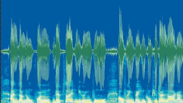 Schallsignal gesprochener Sätze
