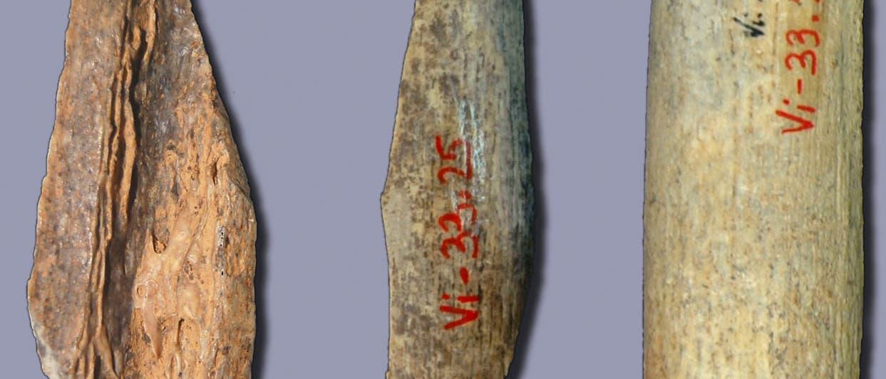 Archaische DNA