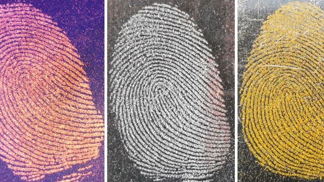 Fingerabdrücke weisen ein individuelles Muster auf, das sich mit Hilfe von färbenden Pulvern visualisieren lässt. Von links nach rechts: Orangenes Holi-Pulver (UV-beleuchtet) auf einer Spiegelrückseite, Eisenpulver auf Glas und Kurkuma auf Aluminium.