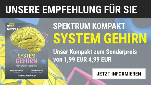 """Unsere Empfehlung: Das Kompakt """"System Gehirn"""" für 1,99 EUR statt 4,99 EUR."""
