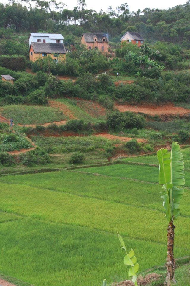 Madagassisches Dorf