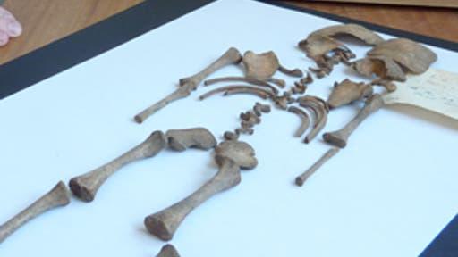 Römer töteten ungewollte Kinder