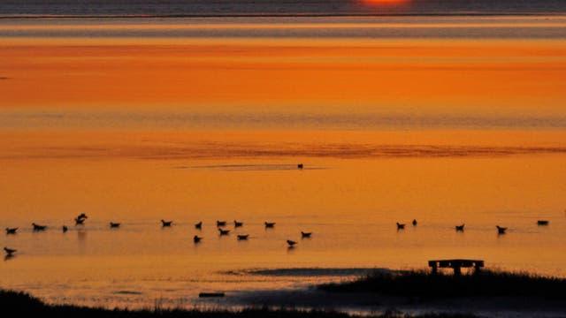 Sonnenaufgang vor Trischen