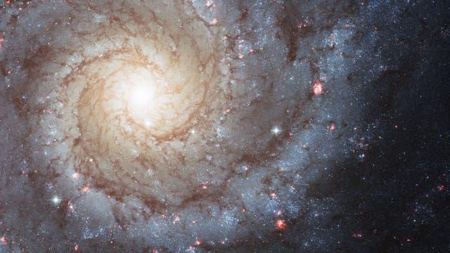 M74 (NGC 268)