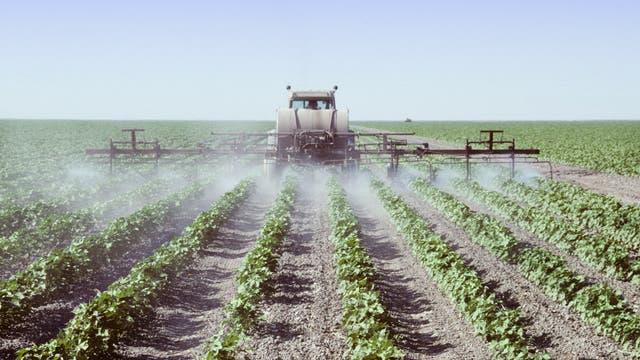 Sprühfahrzeug quasi aus dem Pestizidnebel heraus fotografiert. Hoffe, der Fotograf trug Atemschutz