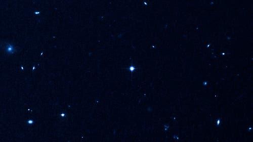 Der blaue Streuner HE 0437-5439