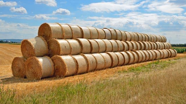 Stroh ist Biomasse für Biokraftstoff