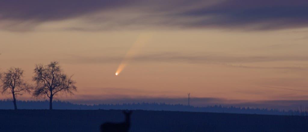 Komet C/2006P1 (McNaught)