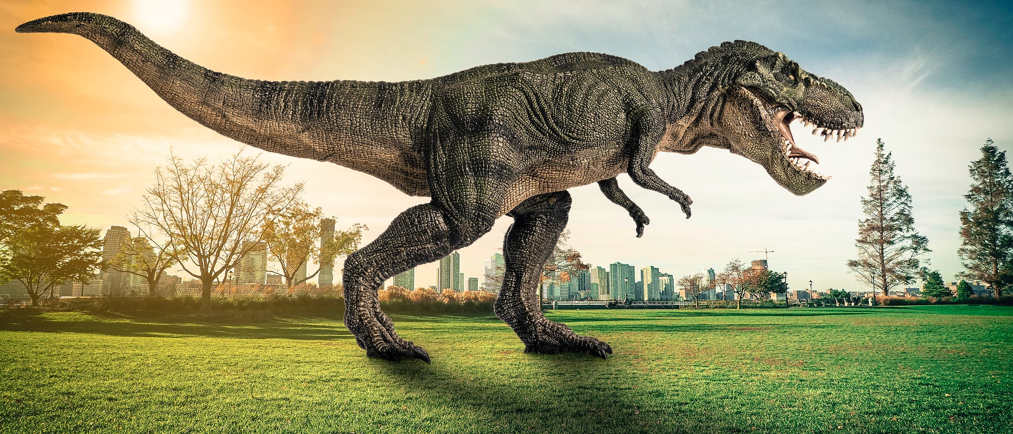 Modell eines T. rex im Park einer Großstadt