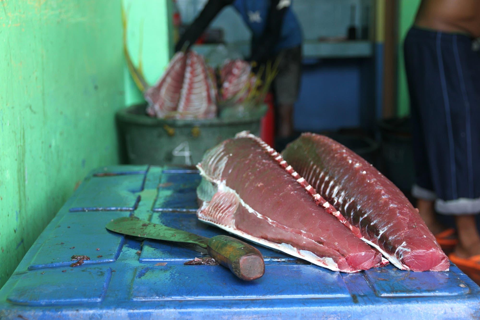 Der frische Thunfisch wird direkt im Hafen weiterverarbeitet