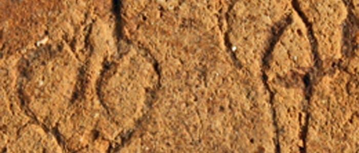 Ältestes mykenisches Schrifttäfelchen in Müllgrube entdeckt