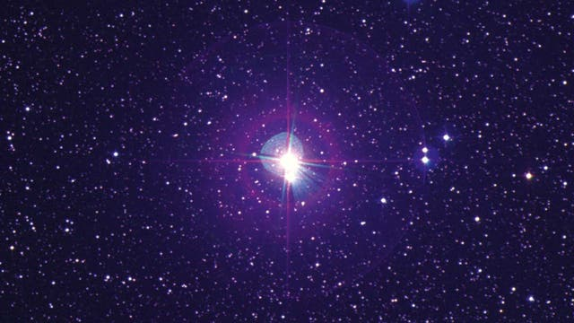 Der Stern Delta Cephei