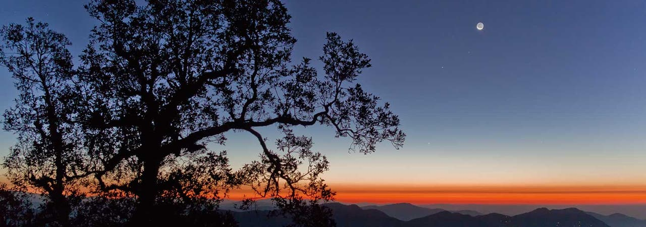 The World at Night: Morgenstimmung